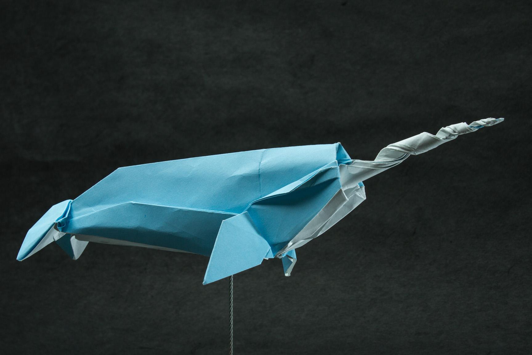 Zing Origami - 2010