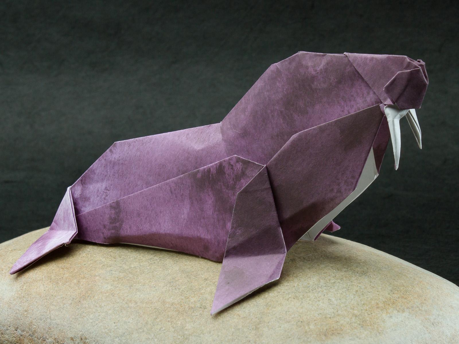 Bull Walrus 2010